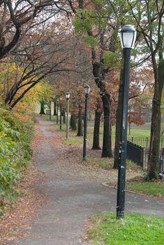 Fall in the park.  Shore Road, Brooklyn