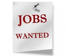Jobsdhamaka is India's Job Portal. Search & apply to best Guntur jobs across top Companies now. Start your new career with us today. Boiler Operation, Online Job Opportunities, Bank Jobs, Jobs Jobs, No Experience Jobs, Company Job, Job Portal, Job Career, Teaching Jobs