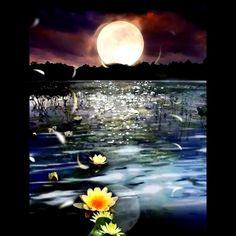 Good Night Beautiful, Good Night Gif, Good Night Sweet Dreams, Beautiful Moon, Imagenes Gift, Beautiful Scenery Pictures, Nature Iphone Wallpaper, Cute Baby Girl Images, Love You Gif