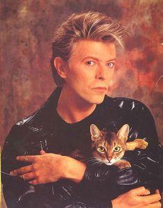 David Bowie con su gato