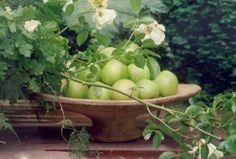 Flowers with Walda Pairon/Belgian Pearls Blog- Belgium.