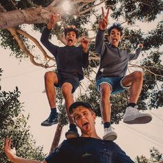 Jake Paul and The Dobre Twins
