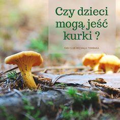 Czy dzieci mogą jeść kurki ? - Profesor Michał Tombak Stuffed Mushrooms, Stuff Mushrooms