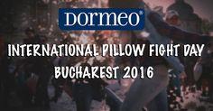 international,pillow,fight,2016,dormeo,video,solomon, media,bucharest,bucuresti,2 aprilie