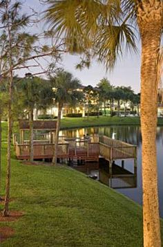 Cameron Cove Apartments Davie Fl