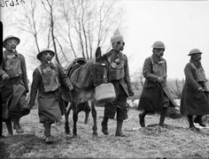 BRITISH ARMY FRANCE 1940 (F 2676)   Indian muleteers and mule wearing gasmasks, 21 February 1940.