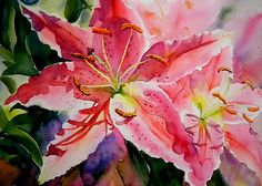 """Birthday Lilies  Pink stargazer lily watercolor painting  15"""" x 11""""  Copyright Ruth S Harris"""