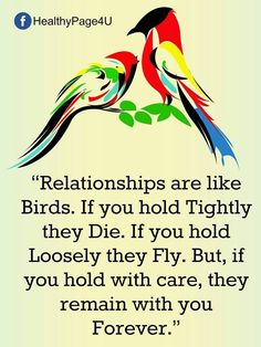 Relationships are like birds.