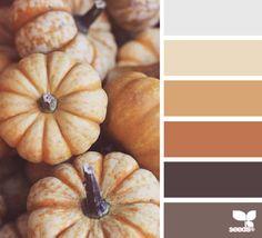 autumn tones | design seeds | Bloglovin