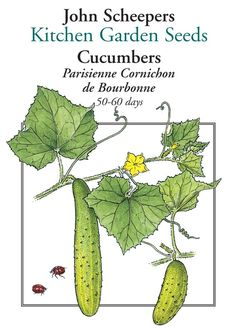 Parisienne Cornichon de Bourbonne Cucumber - Pickling Cucumbers - Cucumbers - Fruits & Vegetables - Garden Seeds