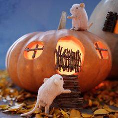 Pumpkin Carving Ideas | Pumpkin Decorating Ideas | Hallmark