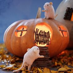 Pumpkin Carving Ideas | Pumpkin Decorating Ideas | Hallmark
