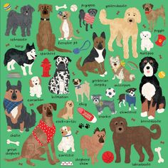 Doodle Dogs and Other Mixed Breeds 500 Piece Puzzle features illustrations of 22 mixed breed dogs including the Goldendoodle, Pugapoo, Dog Puzzles, Cavachon, Activities For Adults, Doodle Dog, Mixed Breed, Goldendoodle, Big Kids, 500 Piece Jigsaw Puzzles, Fur Babies