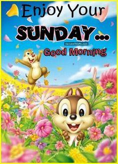 638 Best Sundays Best Images Domingo Good Morning Quotes Sunday