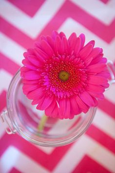 Complement the other elements of your decor with similar colored blooms! Here, the bright pink chevron pairs perfectly with a pop of color with a bright Gerbera Daisy. Shop Gerbera Daisies and other popular bulk flowers year-round at GrowersBox.com!