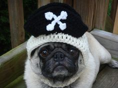 Pirate Treasures  Dog Hat / Made to Order. $22.00, via Etsy.
