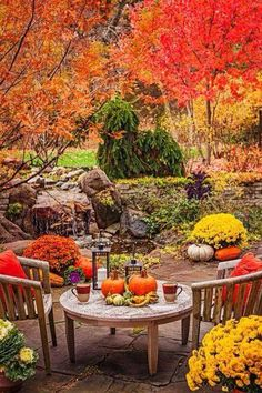 Garden Tour: Autumn Alfresco In this Chicago-area home's landscape, intimate retreats and brilliant fall color create fresh reasons to linger outdoors. Feliz Halloween, Fröhliches Halloween, Flora, Fall Pictures, Patio Pictures, Autumn Photos, Autumn Garden, Fall Harvest, Happy Fall