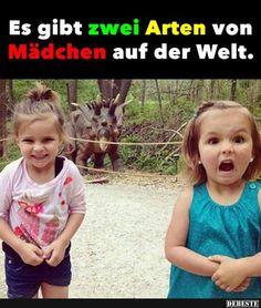Es gibt zwei Arten von Mädchen auf der Welt.. | Lustige Bilder, Sprüche, Witze, echt lustig