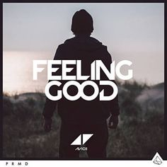 Found Feeling Good by Avicii with Shazam, have a listen: http://www.shazam.com/discover/track/262722696