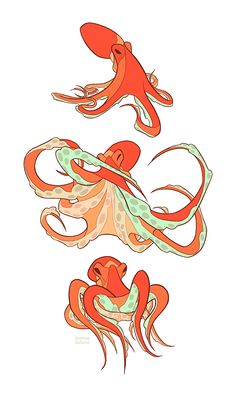 Studies - Octopus by oxboxer.deviantart.com on @deviantART ✤ || CHARACTER DESIGN REFERENCES | Find more at https://www.facebook.com/CharacterDesignReferences if you're looking for: #line #art #character #design #model #sheet #illustration #expressions #best #concept #animation #drawing #archive #library #reference #anatomy #traditional #draw #development #artist #pose #settei #gestures #how #to #tutorial #conceptart #modelsheet #cartoon