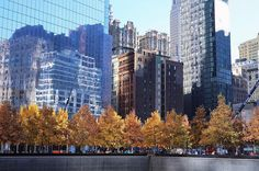 Sunny autumn days  #oneworldtradecenter #manhattan #nyc #nycdotgram #newyorkcity #newyork_ig #usa #nyc_explorers #nycstreets #instatravel  #instatravel #travelgram #canonglobal #traveldreaming #wanderlust #travels #igers #instagood #searchwandercollect #inspiremyinstagram #lifeofadventure #planetwanderlust #instapics #latergram One World Trade Center, I Love Nyc, Manhattan Nyc, Autumn Day, New York Skyline, Planets, Wanderlust, Usa, Travel