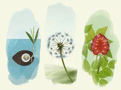 Bloom, un homenaje a la naturaleza - Frikids