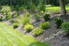 Areas of barks and plants make an inexpensive alternative to a retaining wall