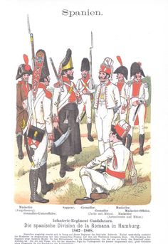 Band VII #53 -  Spanien Regt. Guadalaxara Division La Romana 1808-09