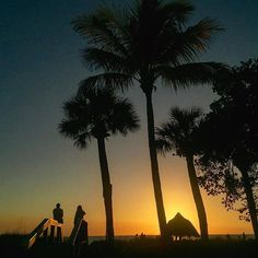 Beautiful Naples, Florida Sunset 🌅🌴☀️👌🏼 || 📷  @marycarolphotography Regram via @mustdoflorida Edgewater Beach, Marco Island Florida, Naples Florida, Fun Activities For Kids, Beach Hotels, Day Trips, Night Life, Travel Tips, Places To Visit