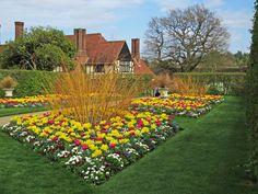Summer Flowers, Flower Beds, Beautiful Gardens, Tulips, Decoration, Display, Landscape, World, Creative