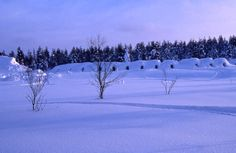 Snow Igloos... You can stay here. Don't worry, they provide wool sweaters, blankets, sleeping bags... Go to Finland!!