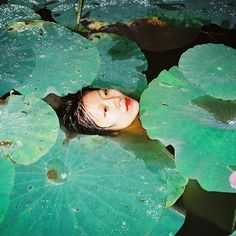 Ren Hang . . . . . #renhang #dtestudio #dreamtheend #rip #inmemory #lilpads #water #pond #floating #serene #contemporaryphotography #asianart #green #chinesephotography #lipstick