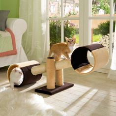 Cat see-saw...omfg the babies would love this!!