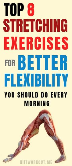 Top 8 Stretching Exercises For Better Flexibility You Should Do Every Morning. Top 8 Stretching Exercises For Better Flexibility You Should Do Every Morning. Best Stretching Exercises, Yoga Moves, Improve Posture, Thing 1, Health Fitness, Gym Fitness, Excercise, Back Pain, At Home Workouts