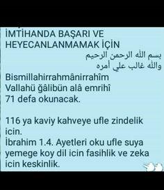 Islam Quran, Allah
