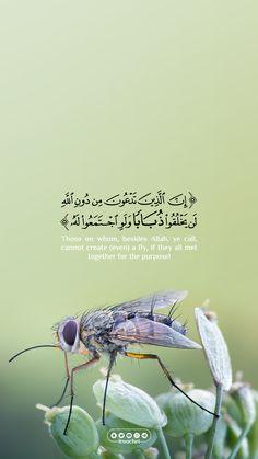Quran Quotes Love, Beautiful Quran Quotes, Quran Quotes Inspirational, Imam Ali Quotes, Beautiful Arabic Words, Arabic Love Quotes, Muslim Quotes, Religious Quotes, Islamic Quotes