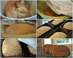 Mennonite Girls Can Cook: Whole Wheat Bread  ~~ by Anneliese.. Whole Wheat Flour;  Multigrain Flour;  Rolled Oats;  Bran;  Rye Flour; Wheat Germ;  Flaxseed