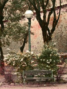 Park bench in a garden beneath the wall of the ancient Fortress in Siena, Tuscany.