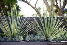 Garden Design: Caringbah | Secret Gardens