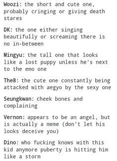 dino, funny, kpop, seventeen, vernon, woozi, mingyu, s.coups