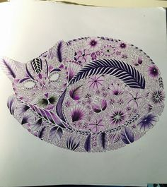 Tropical wonderland cat
