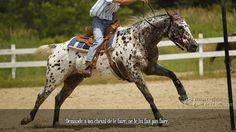 Demande à ton cheval de le faire, ne le lui fait pas faire.