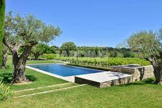 Pas de barrière, pas de clôture, le jardin trouve un prolongement naturel dans la vaste étendue de vignes à peine délimitée par des bosquets d'arbres et arbustes.
