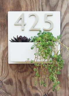 UrbanMettle - x Modern White Lacquer Wall Planter with Brushed Aluminum Address Numbers, Address Plaque with Planter