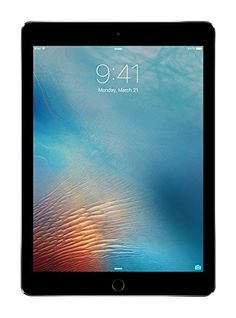 iPad Pro 9.7-inch  (256GB, Wi-Fi,  Space Gray) 2016 Model -- You can find more details by visiting the image link.