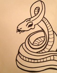 Snake Drawing (unfinished)