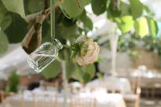 The little details in the Glass House make your event extra special and show off how beautiful the Glass House is!