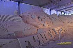 "Sand sculpture at the Pier 60 ""Sugar Sand Festival"" in Clearwater Beach,  Florida. From Jack Armstrong and tampabaysnowbirder.com Fun Places To Go, Things To Do, Sand Sculptures, Lion Sculpture, Tampa Bay Area, Clearwater Beach, Destin Beach, Florida Beaches, Sugar"