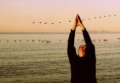 https://flic.kr/p/9r35r3 | Yoga | Clase de Yoga en Kino con el Dr. Cabrera