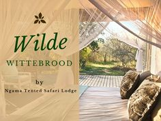 'n Wilde wittebrood by Ngama Tented Safari Lodge in Hoedspruit. Tent Living, Honeymoon Places, Honeymoon Planning, South Africa, Safari, How To Plan, Blog, Travel, Viajes